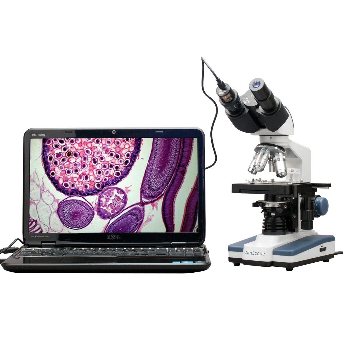 Mikroskop Senyawa Binokuler Digital LED – AmScope