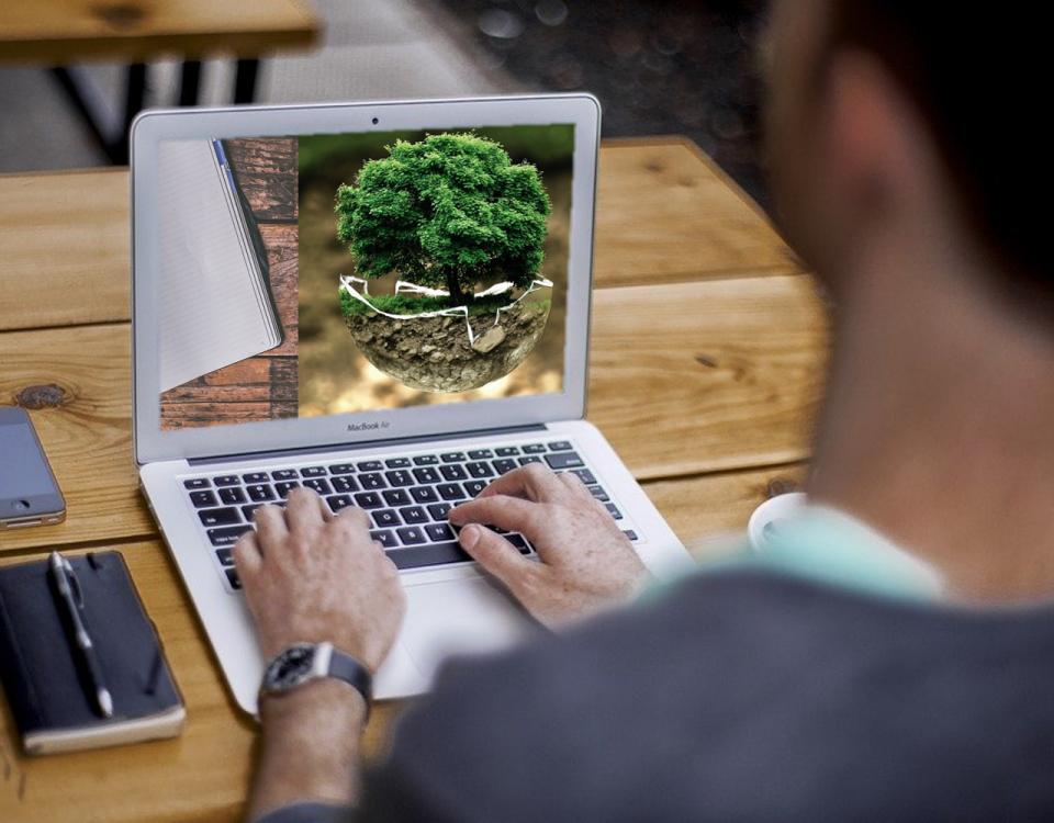Posting Blog Tentang Lingkungan